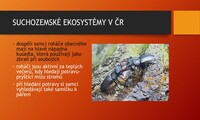 Suchozemské ekosystémy v ČR - parky, městská zeleň a lidská obydlí