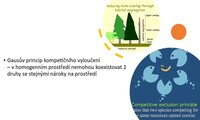 Prostorová koexistence, udržitelný rozvoj, limity přírodního prostředí