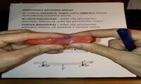 Deformace pevného tělesa