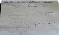 Délka kružnice - obvod kruhu