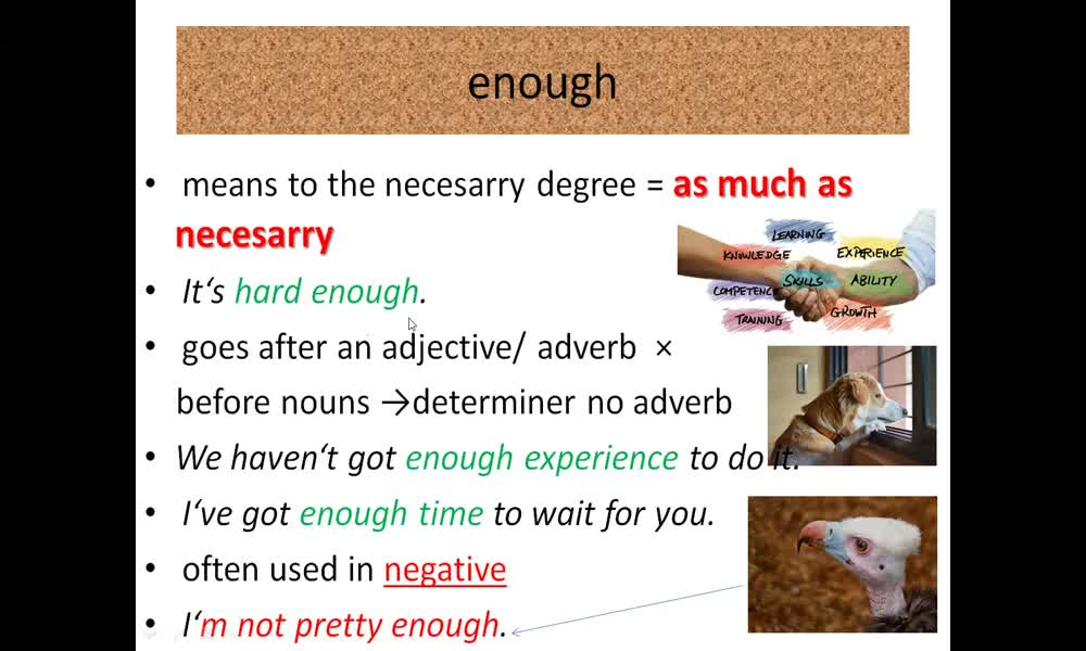 6. náhled výukového kurzu Adverbs of degree