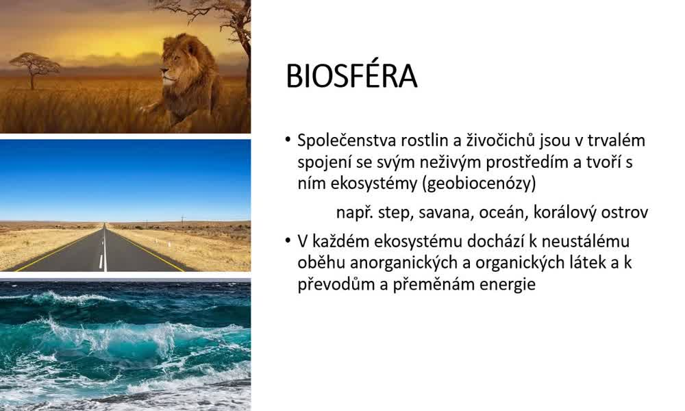 2. náhled výukového kurzu Geobiomy