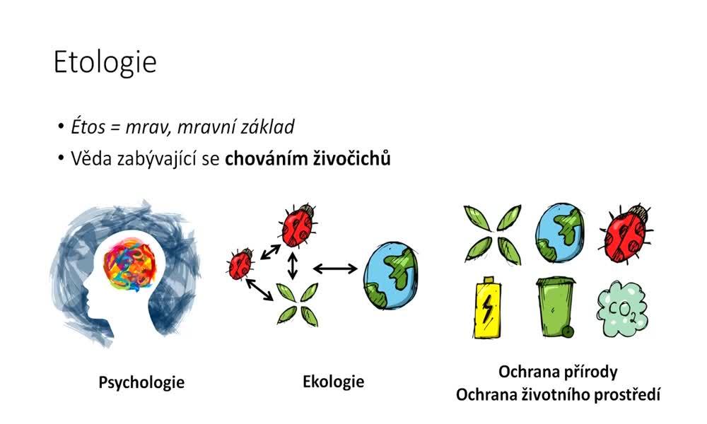 2. náhled výukového kurzu Etologie - co je to etologie